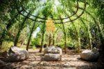 5 ιδέες για για φυσικούς φράχτες που είναι και όμορφοι και λειτουργικοί